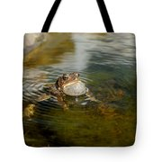 Pond Song Tote Bag
