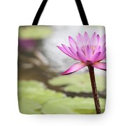 Pond With Pink Water Lily Flower Tote Bag