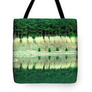 Ponderings Tote Bag