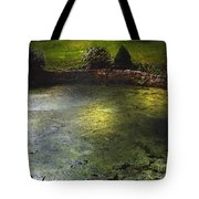 Pondshine Tote Bag