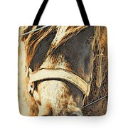 Pony Face Tote Bag
