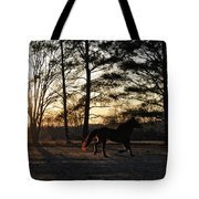 Pony's Evening Pasture Trot Tote Bag