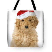 Poodle In Christmas Hat Tote Bag