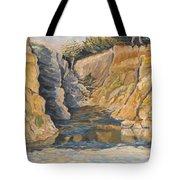 Poplar Cove Tote Bag