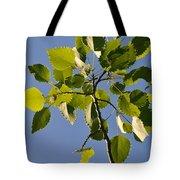 Poplar Leaves Tote Bag