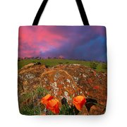 Poppies And Clouds Tote Bag