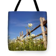 Poppies And Fence 2am-110209 Tote Bag