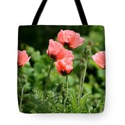 Poppies In My Garden Tote Bag