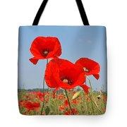 Poppy Fields 4 Tote Bag