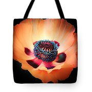 Poppy In The Darkness Tote Bag
