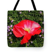 Poppy On Thyme  Tote Bag