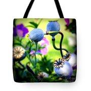 Poppy Pods And Curvy Stems. Tote Bag