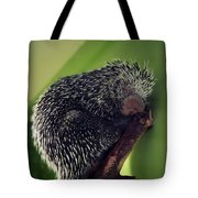 Porcupine Slumber Tote Bag