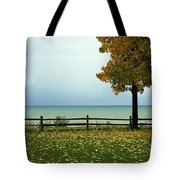 Port Sanilac Lookout, Michigan Tote Bag