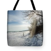 Port Washington - South Beach 3  Tote Bag
