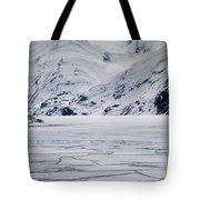 Portage Lake Tote Bag