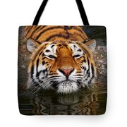 Portrait Of A Bathing Siberian Tiger Tote Bag