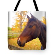 Portrait Of A Beauty Tote Bag