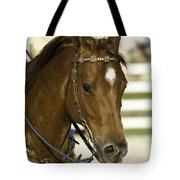 Portrait Of A Brown Horse Tote Bag