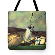 Portrait Of A Butterfly Tote Bag by James W Johnson