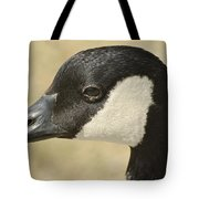 Portrait Of A Canadian Goose  Tote Bag