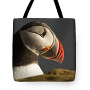 Portrait Of A Colorful Puffin Iceland Tote Bag