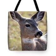 Portrait Of A Deer Tote Bag