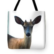 Portrait Of A Deer Tote Bag