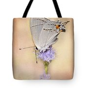 Portrait Of A Gray Hairstreak Tote Bag