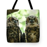 Portrait Of A Pair Of Owls Tote Bag