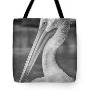 Portrait Of A Pelican Tote Bag