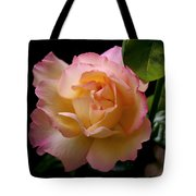 Portrait Of A Rose Tote Bag by Rona Black