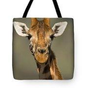 Portrait Of A Rothchilds Giraffe Tote Bag