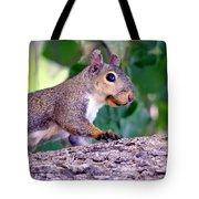 Portrait Of A Squirrel Tote Bag