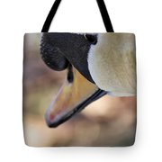 Portrait Of A Swan Tote Bag