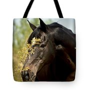 Portrait Of A Thoroughbred Tote Bag