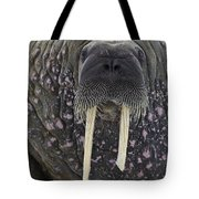 Portrait Of A Walrus Tote Bag