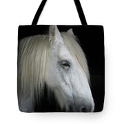 Portrait Of A White Horse Tote Bag
