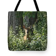 Portrait Of A Whitetail Fawn II Tote Bag