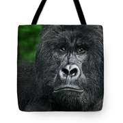 Portrait Of A Wild Mountain Gorilla Silverbackhighly Endangered Tote Bag