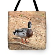 Portrait Of An Alabama Duck 2 Tote Bag