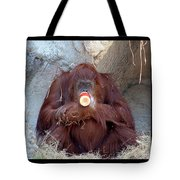 Portrait Of An Orangutan Tote Bag
