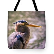 Portrait Of Ardea Herodias Tote Bag