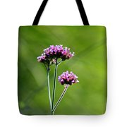 Portrait Of Purple Verbena Tote Bag
