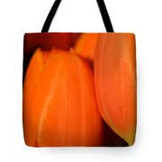 Portrait Of Red Tulips Tote Bag