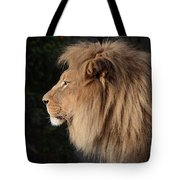 Portrait Of The King Of The Jungle  Tote Bag