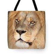 Portrait Of The Lion Tote Bag
