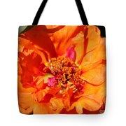 Portulaca Named Sundial Tangerine Tote Bag