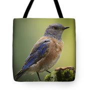 Posing Bluebird Tote Bag