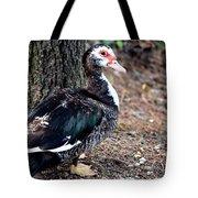 Posing Drakelet Tote Bag